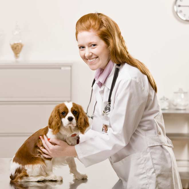 Woman-Vet-with-Dog
